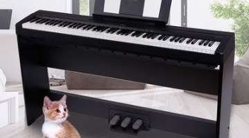 人气爆款流行新品经典琴款随心选!电子钢琴怎么样,专业品质,非凡造艺,随时开启你的音乐之旅!